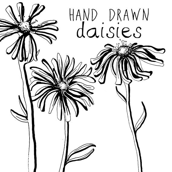 Ink Drawing Daisy Flower Clipart Flowers Clip Art Digital