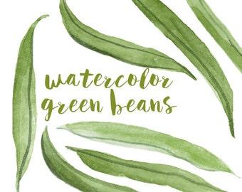 Watercolor Green Beans, Green Bean Clip Art, Bean Clipart, Veggie Clipart, Culinary Clip Art, Food Clipart, Green Clip Art, Food Art