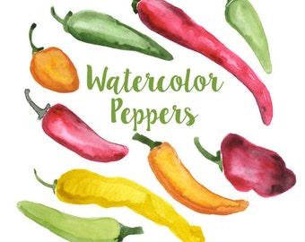 Watercolor Bell Peppers, Bell Pepper Clip Art, Pepper Clipart, Veggie Clipart, Culinary Clip Art, Food Clipart, Pepper Clip Art, Food Art