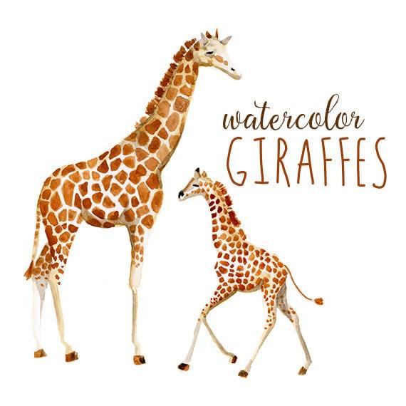 Watercolor Giraffes Zoo Animals Watercolor Giraffe Clip ...
