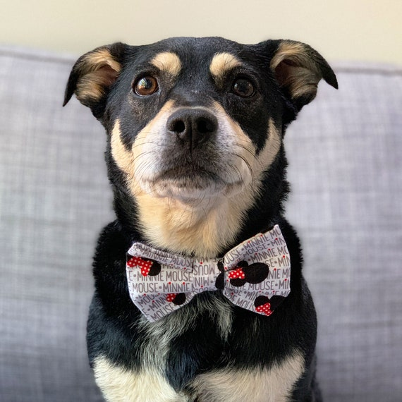 Minnie Mouse Dog Bow tie