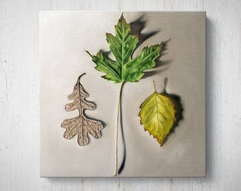 Autumn Leaf Trio - Fall Oil Painting Giclee Gallery Mounted Canvas Wall Art Print