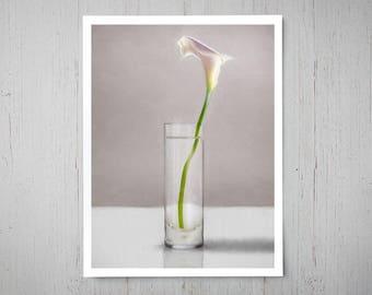 White Calla Lily - Fine Art Oil Painting Archival Giclee Print Decor by Artist Lauren Pretorius