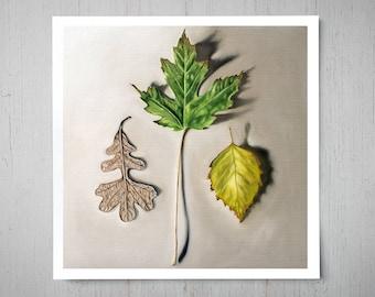 Autumn Leaf Trio - Fall Art Oil Painting Archival Giclee Print Decor by Artist Lauren Pretorius