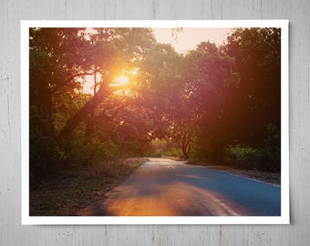 South Africa Safari, Landscape Photography, Archival Giclee Print, Nature Photo - Multiple Sizes Available
