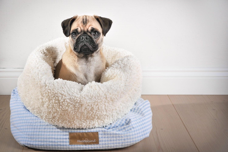 Kuschelsack CANICULA für Hunde