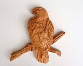 Bald Eagle Perched on a B...