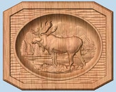 Hunting ~ Moose Hunting ~...