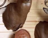 Elk Wall Clock, Rustic Ho...