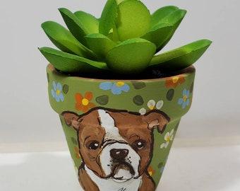 Bulldog mini pot with artificial succulent