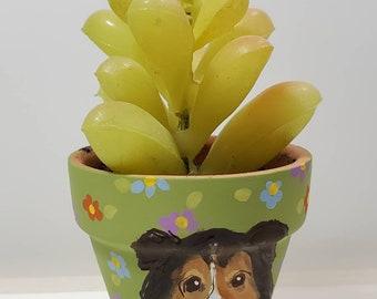 Sheltie mini pot with artificial succulent