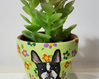 Boston Terrier planter with artificial succulent