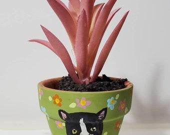 Tuxedo Cat planter with artificial succulent