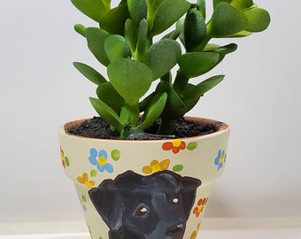 Labrador mini pot with artificial succulent