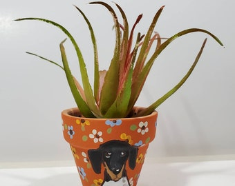 Piebald Dachshund mini pot with artificial succulent