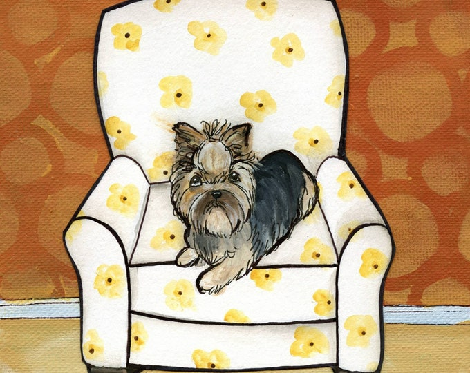 Sunshine, Yorkie dog portrait, Yorkshire terrier laying in white daisy pattern chair