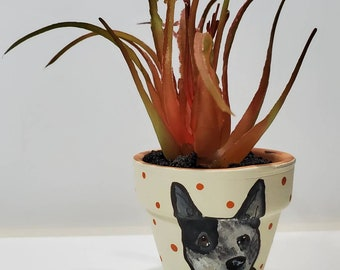 Cattle Dog pot with artificial succulent