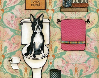 Flush Again,  Boston Terrier Dog