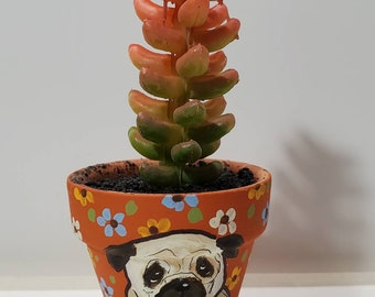 Pug mini pot with artificial succulent