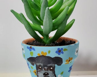 Schnauzer mini pot with artificial succulent