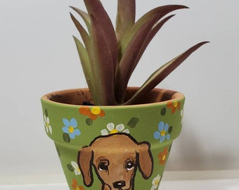 Dachshund mini pot with artificial succulent