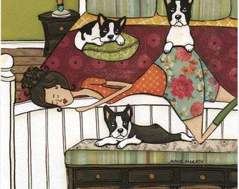 Boston's Bed, dog art print