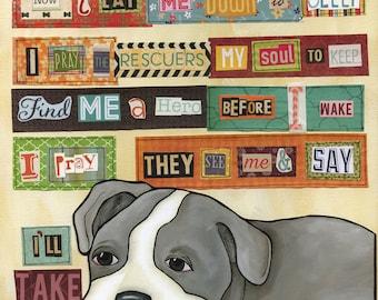 DOG BREED-P,Q,R