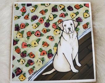 Skittles, Yellow Labrador coaster