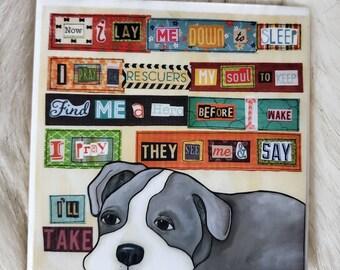 I'll Take coaster, pitbull dog