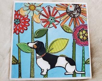 Piebald Fun, dachshund coaster