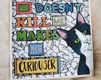 Curiouser cat coaster
