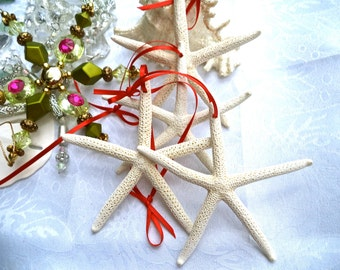 Beach Ornament.  Beautiful white starfish ornament w/ delicate red ribbon tie or choose your own ribbon color!   Simple. Sophisticated. (6)