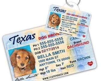 nevada drivers license dog tag