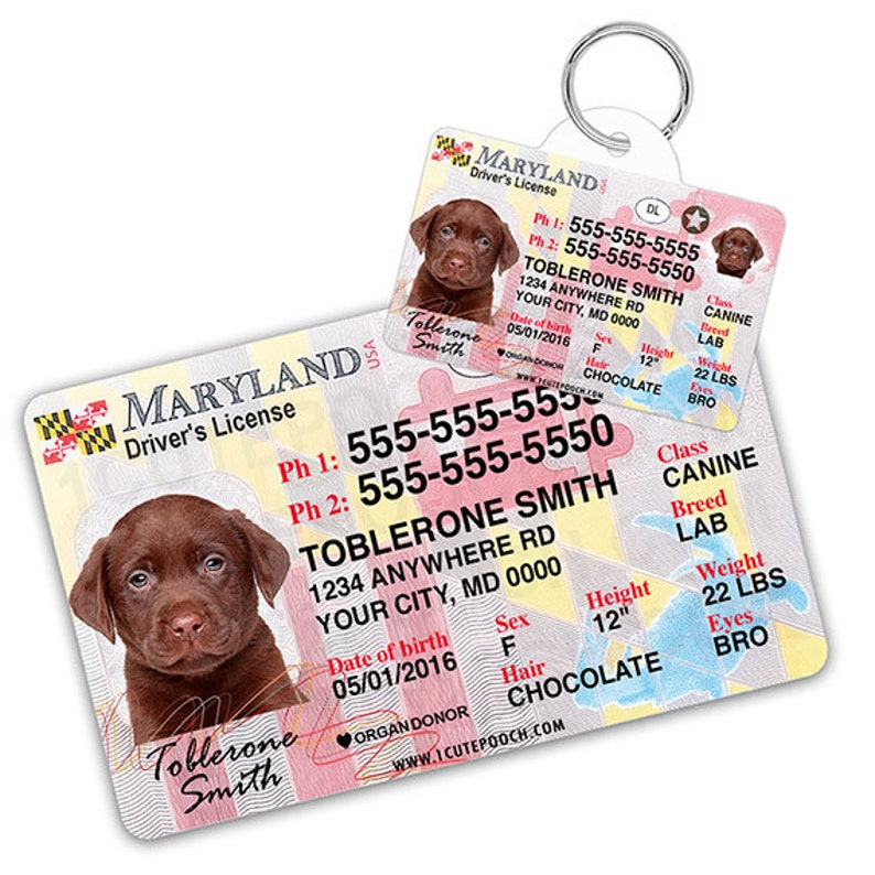 Custom License Maryland Pet Wallet And Id Tags Driver Etsy Card