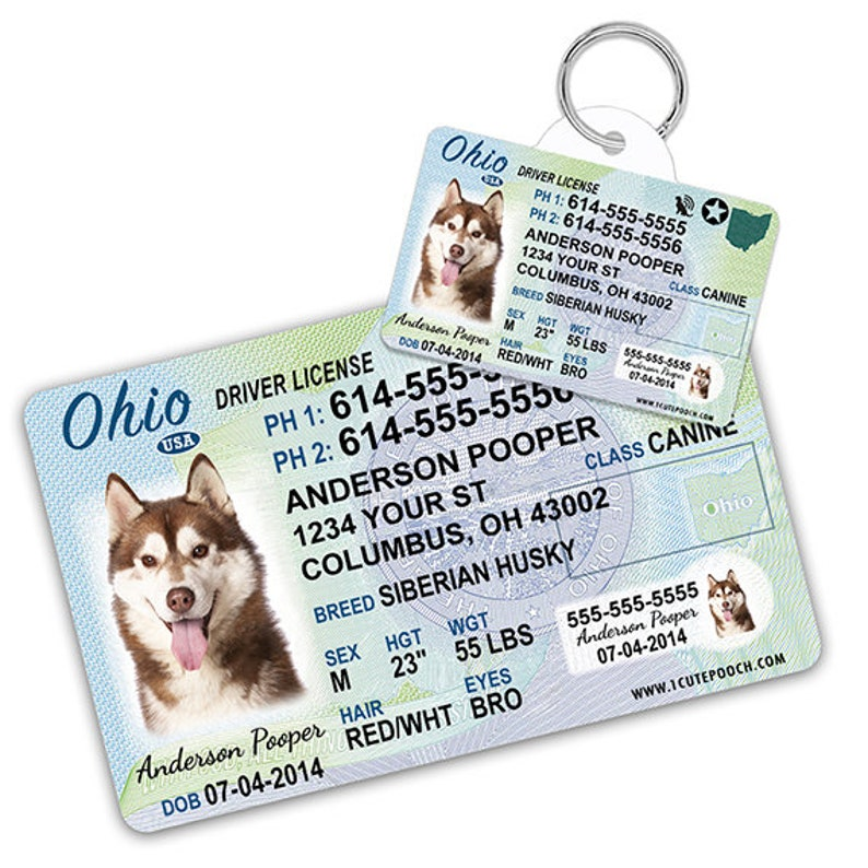 Ohio Driver License Custom Pet ID Tags and Wallet Card - Dog ID Tag -  Personalized Pet ID Tags