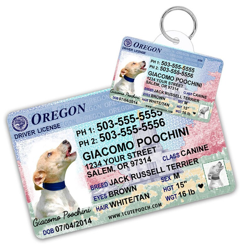 License And Custom Dog Driver Tags Oregon Etsy Pet Wallet Card Id