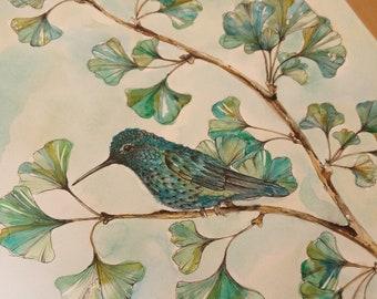 Fine Art Print Pen and Watercolour 'Hummingbird and Ginko Biloba'