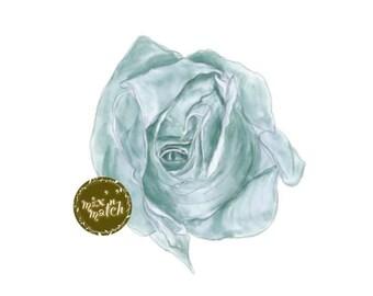 DIGITAL Duck Egg Blue Rose Flower Clip Art Watercolour Wedding Clipart Downloadable Images 300dpi PNG Transparent Background