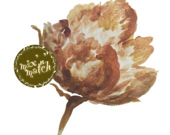 DIGITAL DIGITAL Dusty Peach Terracotta Brown Watercolour Flower Clipart Digital Instant Download PNG 300dpi Transparent Background