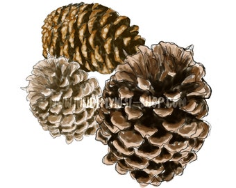 DIGITAL Watercolour Pine Cones Printable Instant Download PNG 300DPI