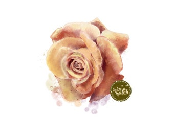 DIGITAL Watercolour Flower Rose Clipart Harvest Gold Amber Burnt Orange Downloadable Printable PNG 300dpi DIY Wedding InsideMyNest