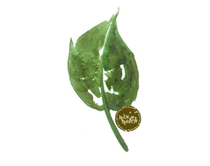 DIGITAL Green Watercolour Leaf Clipart Logo Download PNG 300dpi Transparent Background