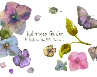 DIGITAL Hydrangea Watercolour Flowers PNG Handpainted Graphics 300dpi Colourful Floral Scrapbook Jewellery Digital Collage Art Petals
