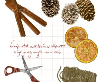 DIGITAL Watercolour Christmas Clipart Pine Cone Cinnamon Dried Orange Slices Printable Instant Download PNG 300DPI