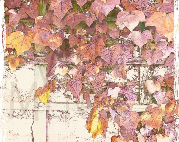Featured listing image: Autumn Fall Nature Leaves Mauve Purple Orange Digital Paper Download Image Vintage Grunge Distressed Print Paper 300dpi