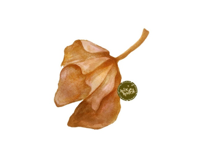 Withered Amber Orange Watercolour Leaf Clipart Logo Digital Download PNG 300dpi DIY Craft Scrapbooking Invitation Card Making