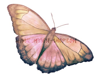 DIGITAL Pink Watercolour Butterfly Clipart Instant Download PNG 300dpi Transparent Background DIY Invitation Card Jewellery Making