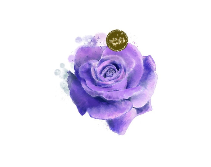 DIGITAL Purple Watercolour Rose Flower Clipart Floral Downloadable Printable PNG 300dpi DIY Wedding InsideMyNest