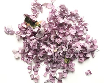 Dried Hydrangea Petals 100% Natural Organic Biodegradable Eco Confetti (1 Litre)