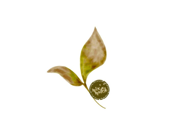 DIGITAL Blush Olive Green Watercolour Leaf Clipart Logo Download PNG 300dpi DIY Craft Scrapbooking Invitation Card Making